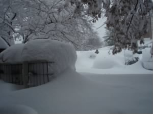 HISTORICAL-FEB-SNOWSTORM-BLIZZARD-OF-02-10-DC-BALTO-AREA 008.JPG