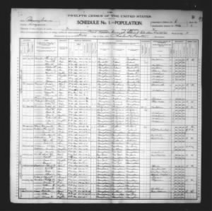 1900 US Census
