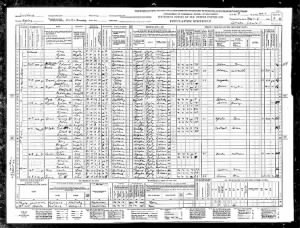 1940 United States Federal Census (Beta).jpg