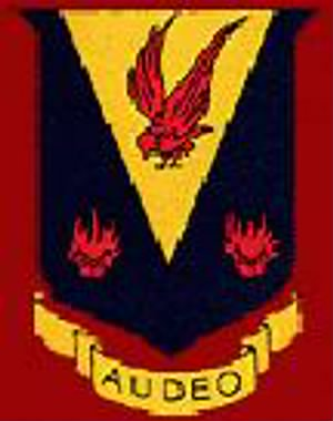 324th Fighter Group Patch.jpg