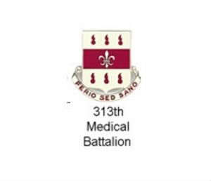 313th Medical Battalion.jpg