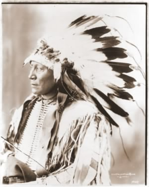 Sioux Chief Hollow Horn Bear.jpg