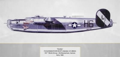 Consolidated B-24H-20-DT Liberator in 453rd BG Livery.png