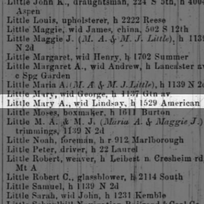 Little Mary A., wid Lindsay, h 1529 American